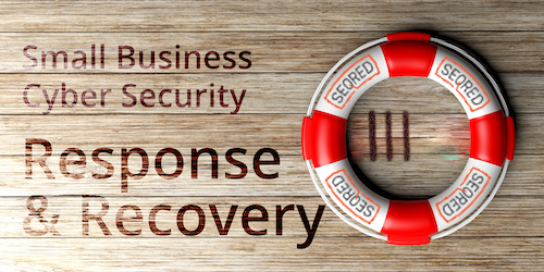 Small Business Cyber Security Response and Recovery. Part IV - Resolve the incident
